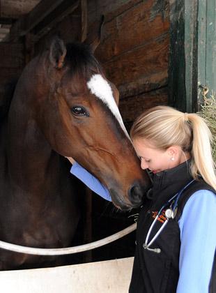 racehorse veterinary